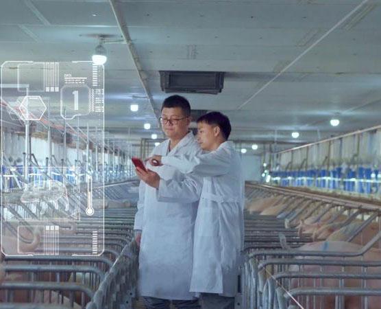 打造智慧养殖技术综合服务平台